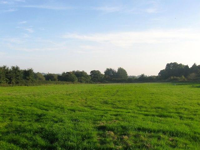 Chalcroft Field