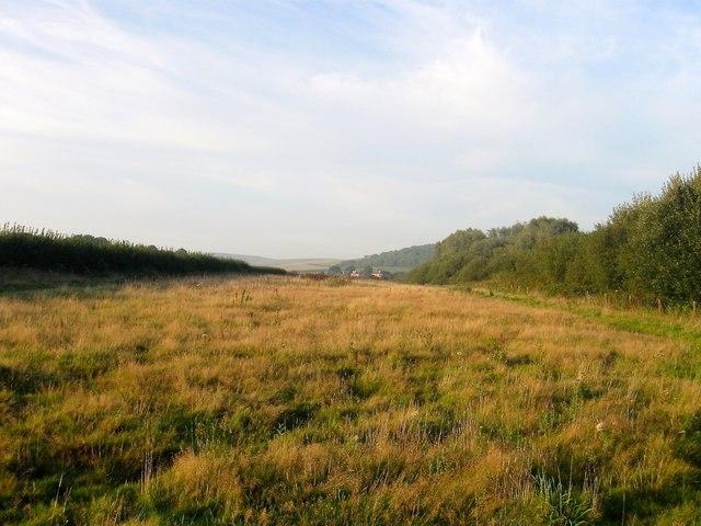 Long Mead (2)