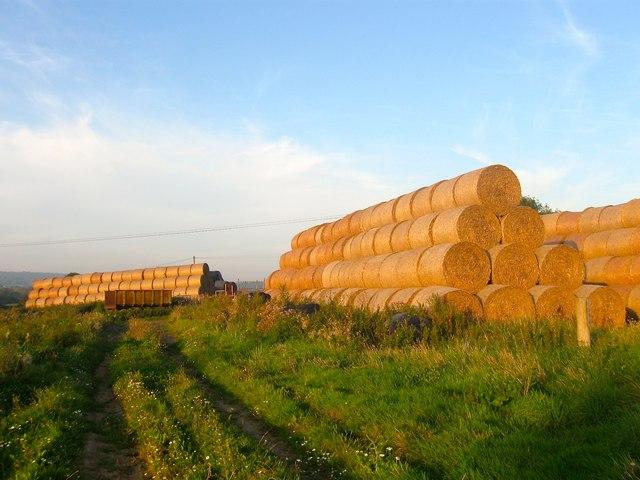 Hay Bales, Ecclesden Farm