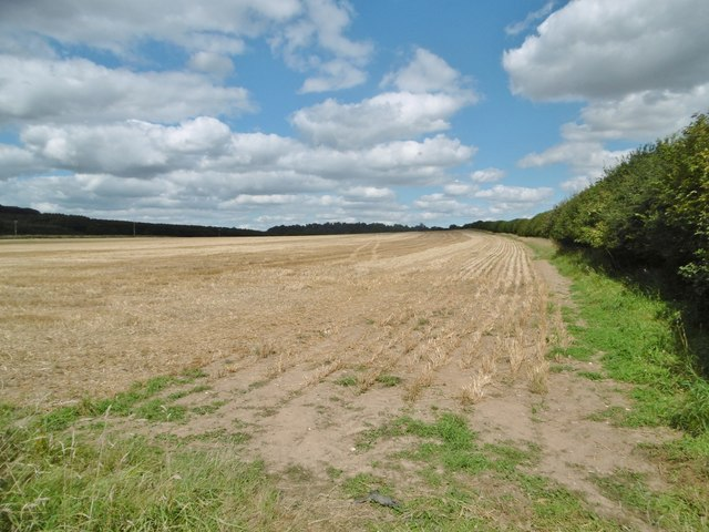 Holwell, stubble field