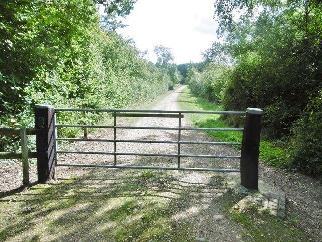 Cranborne, gate