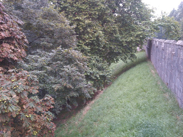 Trees outside the city walls