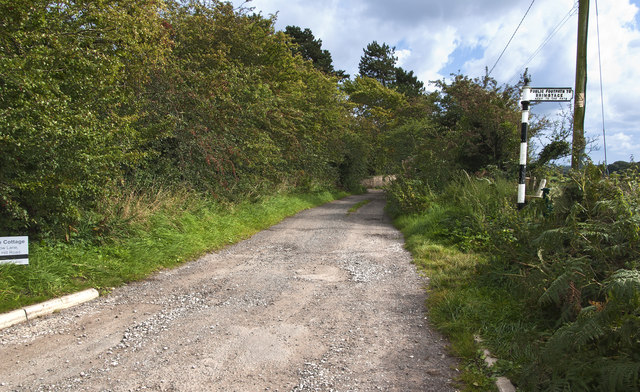Meadow Lane leading to Hillside Cottage