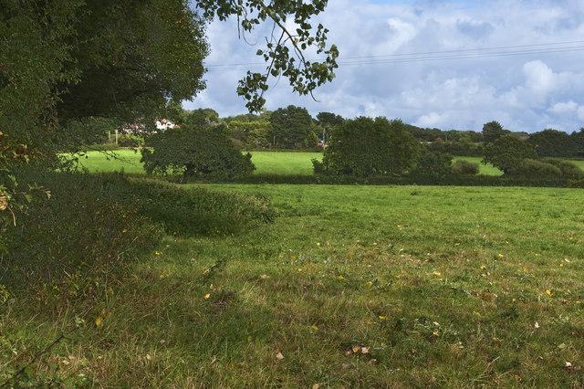 Farmland, pasture