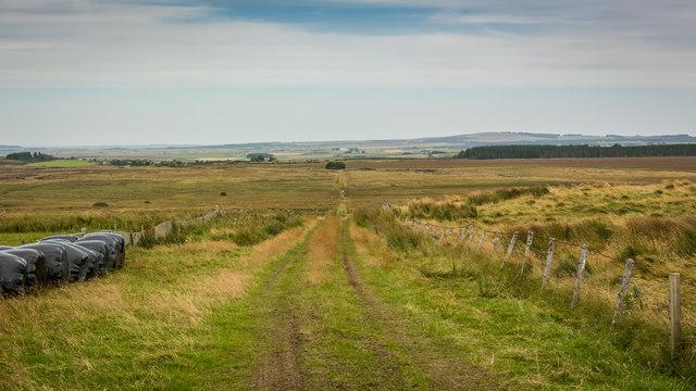 Track to Scotscalder