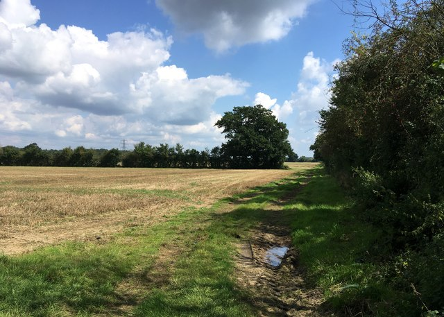 Fields at Broad Common