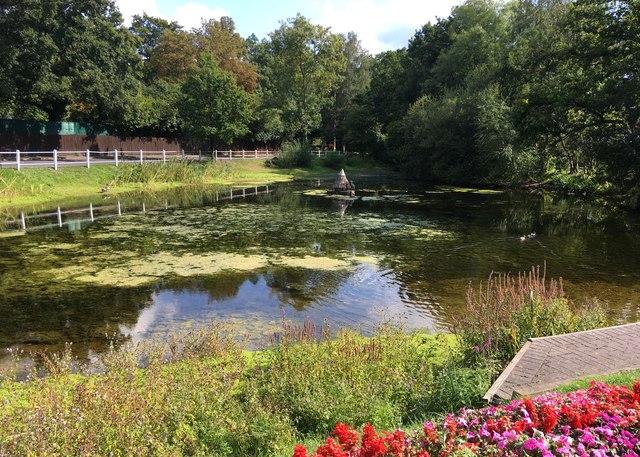 Townsend's Pond, Hurst
