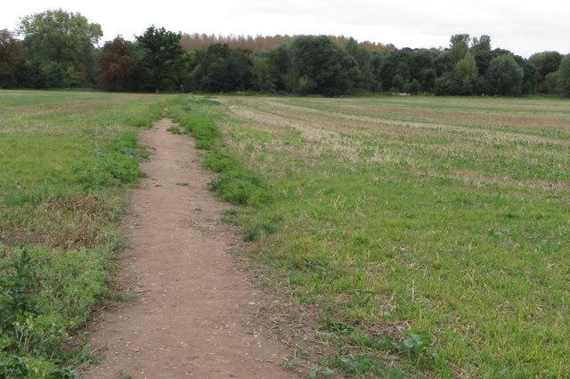 Footpath to Oakley Bridge