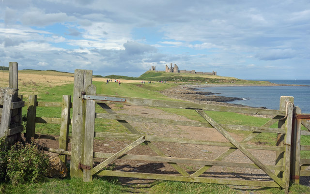Dunstanburgh Castle in the distance