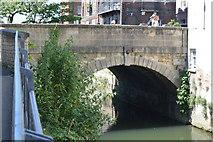SP5105 : Folly Bridge Causeway by N Chadwick