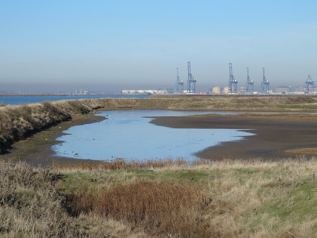Chetney Marshes north of the Chetney Canal