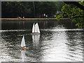 TQ0083 : Black Park Model Boat regatta - yachts by David Hawgood