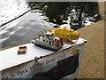 TQ0083 : Black Park Model Boat regatta - display includes submarine by David Hawgood