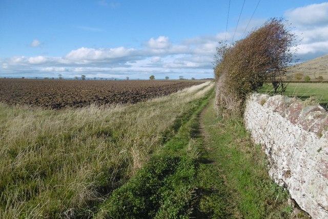 Path by Bonnington