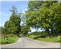 SP6636 : Welsh Lane by David Smith