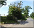 SP6338 : Hedge and trees at Evershaw Farm by David Smith