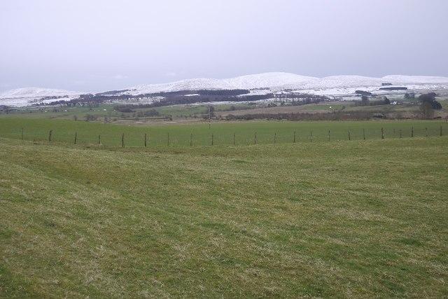 Strath Allan farmland