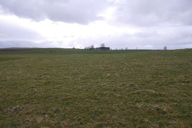 Grassland, Faulds