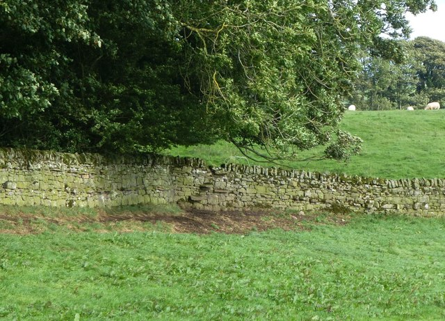 Stone stile built into wall
