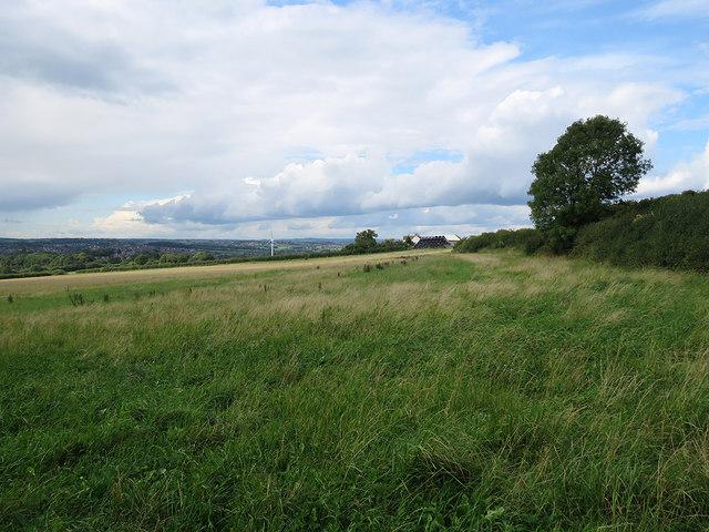 Near Grasscroft Farm