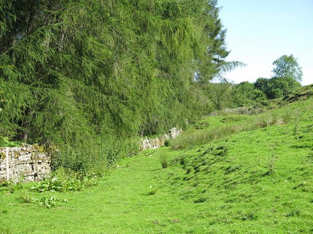 Field above Hudeshope Beck