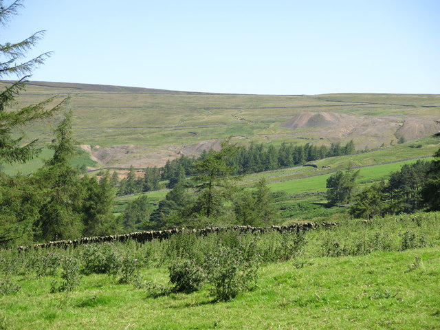 Fields and woodland north of Skears