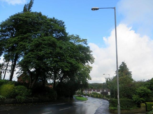 Blue sky after rain