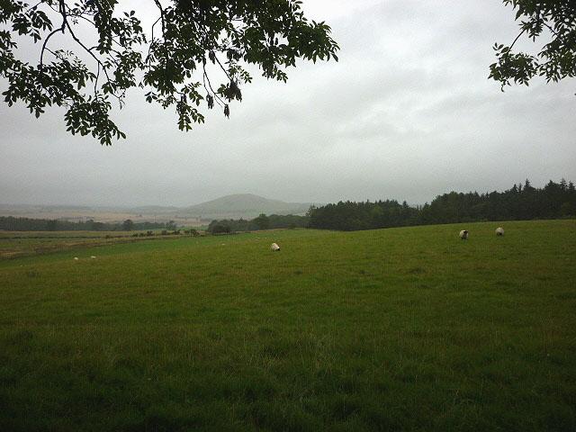 Pastureland near Dean Head