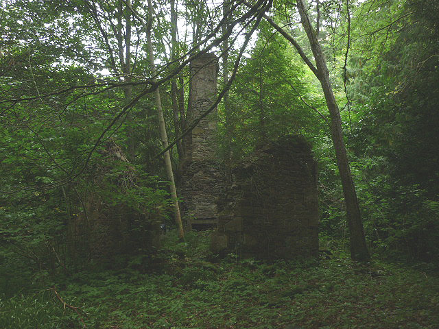 Ruined building in Denholm Dean