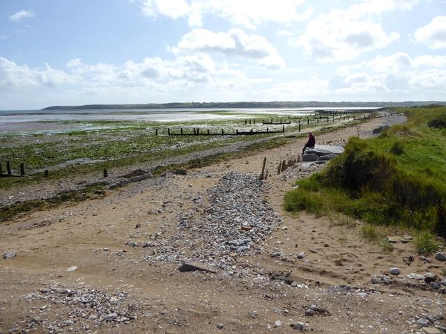 Seaweed-strewn beach and old groynes