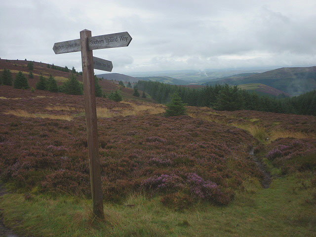 Track junction on Hare Law