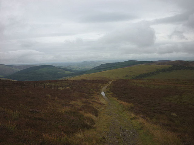The Old Drove Road heading east on Lucken Head