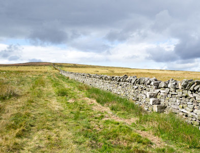 NZ0442 : Dry stone wall with through-stone stile by Trevor Littlewood