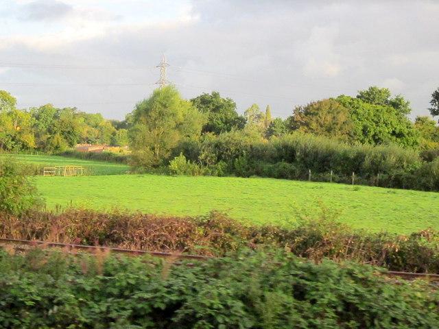 Field near Norton Fitzwarren, railway line to Minehead in foreground
