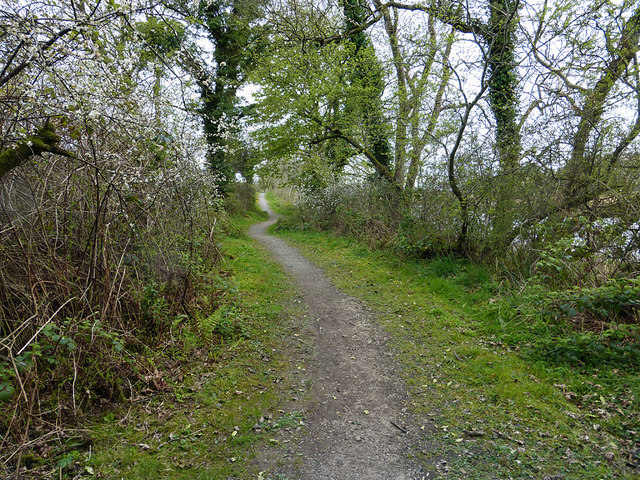 A path by the Tarf Water