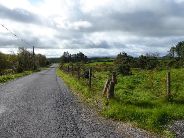 Shantavny Road, Shantavny Scotch