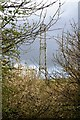 SX4762 : Pylon by Tamar Valley Discovery Trail by N Chadwick