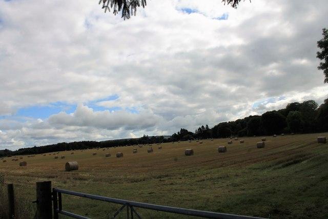 Castle Farm Bales