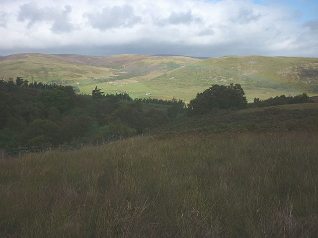 Above Thorny Cleuch