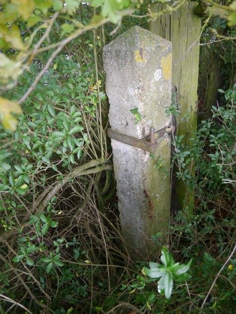 Old gatepost alongside Dycote Lane, Welbourn