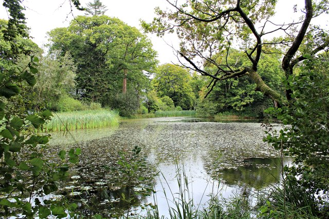 The Lake at Llanerchaeron (1)