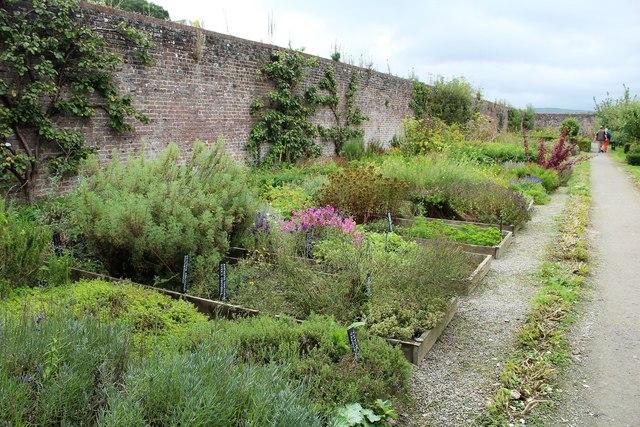 The Herb Garden at Home Farm