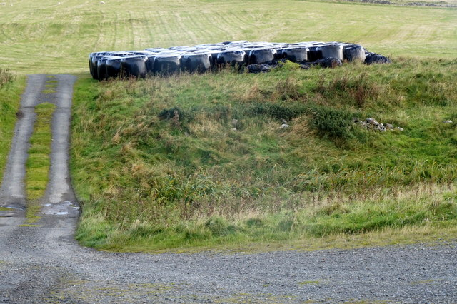 Silage bales at Lund