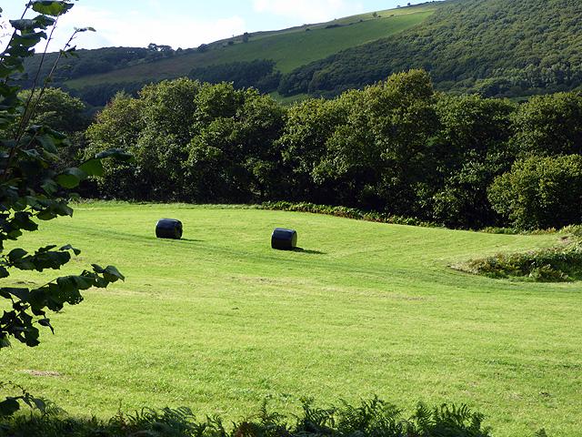 Pasture and bales in Cwm Rheidol