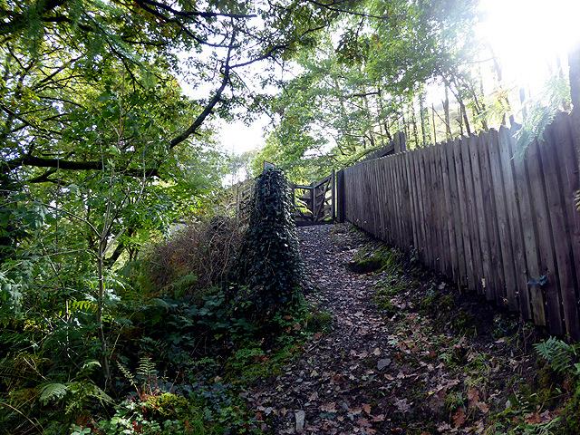 Steep approach to Rheidol Falls station