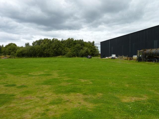 Hangar and trees