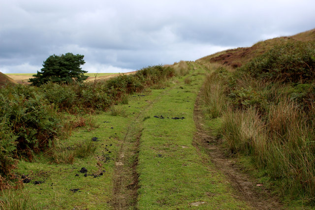 Track on Sheep Cote Brinks