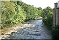 SE0188 : River Ure at Aysgarth by Alan Murray-Rust