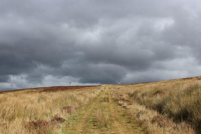 Track on Warley Moor