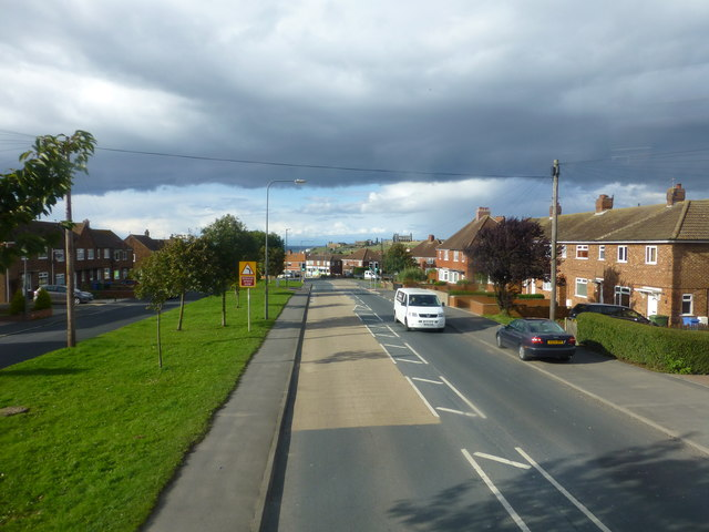Shade and light over Helredale Road